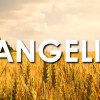 Why isn't evangelism in America more effective? I struggled with this question for some time, wondering what we could do as Christians to motivate others towards experiencing this life that we adore so greatly. Why doesn't Christianity connect with American cluture any longer?